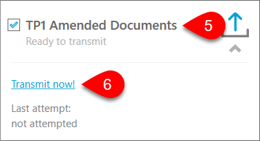 Screen capture showing how to transmit TP1 Amended Documents