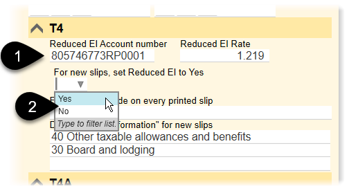 Set reduced EI options on the Info worksheet