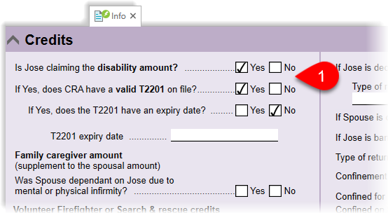 Disability amount and T2201 on the Info worksheet