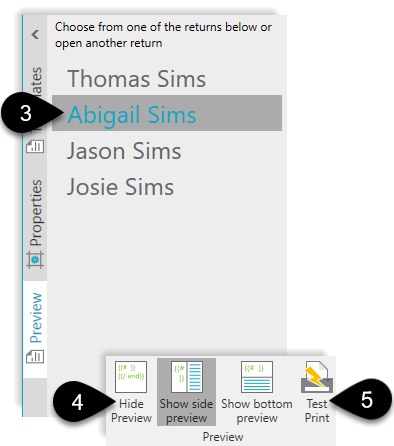 Preview options in the Template Editor
