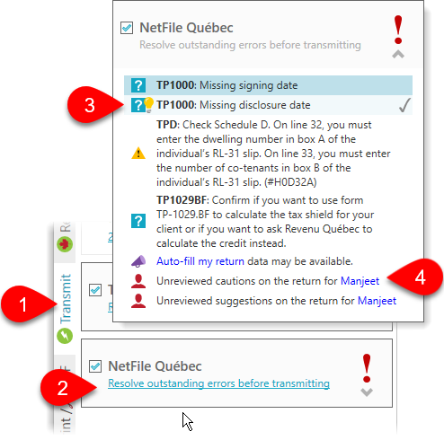 Resolve outstanding NetFile Québec errors