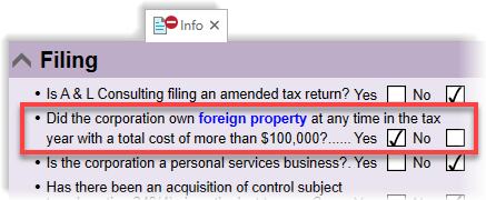Foreign property question on the T2 return