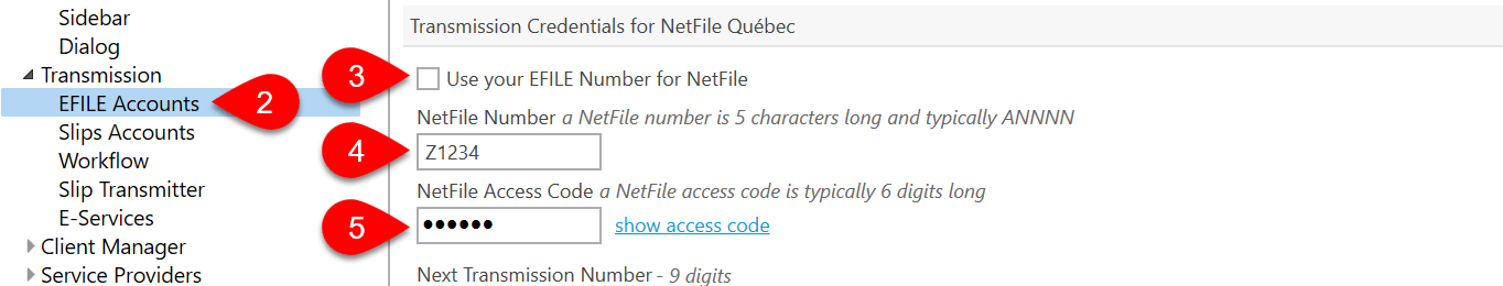 NetFile Options